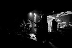 The Mauskovic Dance Band (1)
